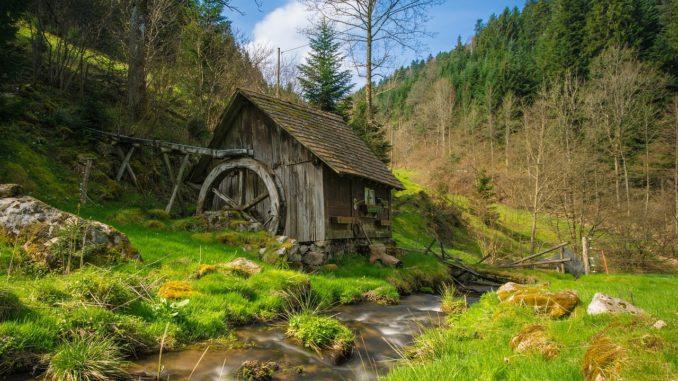 Urlaub im Schwarzwald